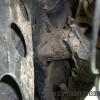 Broken Tacoma motor mount, DS mount cracked 2, DMZ, DMZ Fab (Copy)